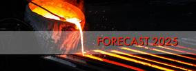 Forecast for the global Foundry Industry