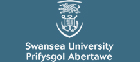 University of Wales - Swansea Casting Group